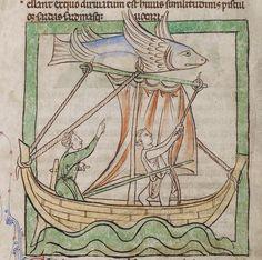 Flying fish, bestiary, England ca. 1250-1260 (LA, Getty, Ms. 100, fol. 46v) @GettyMuseum