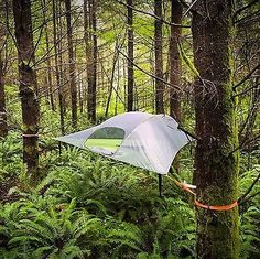 1000+ ideas about Hammock Tent on Pinterest | Tent, Camping ...