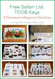 I'm sharing the free Safari Ltd. TOOB Keys and coordinating Montessori-inspired activities at Living Montessori Now.