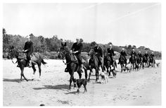 Using horses to assist in the patrol of the United States beaches began as early as 1871. The beach patrols were normally done on foot and at that time were operated by the Life Saving Service, a predecessor of the modern Coast Guard.