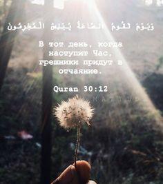 Islamic Wallpaper, Islamic Quotes, Quran, Allah, Muslim, Religion, Bristol, Worship, Mood