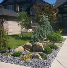 Attractive driveway landscaping for a small front yard. This low maintenance yard on a small city lot is just as nice at night with a few simple lights placed to accent the rocks and trees. Picture compliments of a homeowner with a Dream-yard.