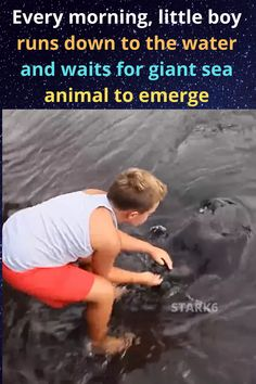 It's a whole new world out there in the ocean, but that doesn't mean that we can't make friends with the creatures that reside there. After looking at this young boy having special interaction with a sea creature, you'll understand how beautiful their bond is.