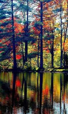 ✯ Fall in the Adirondacks