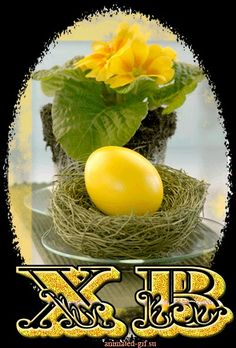 Good Night Image, Flower Aesthetic, Happy Easter, Eggs, Breakfast, Holiday, Flowers, Food, Happy Day