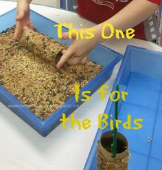 For the Children: Feeding the Birds: Winter Food Source