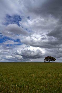 Fotografia de Luis Reininho