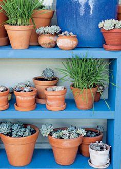 4 dicas para organizar o jardim #jardim