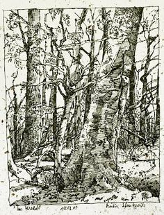 landscape with trees, ink drawing Edition Handdruck Drawing Sketches, Pencil Drawings, Art Drawings, Drawing Tips, Sketching, Drawing Projects, Art Projects, Zentangle, Landscape Drawings