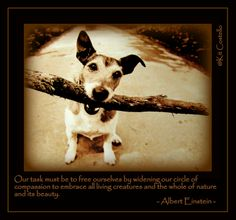 all living creatures...