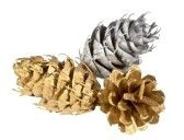 Spray paint pine cones silver and gold to hang on Christmas Tree, put on a wreath or put in a bowl as table decor.