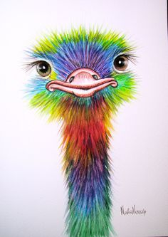 An ORIGINAL  watercolour OSTRICH  painting by artist by Vivaci