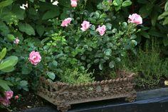 Love Your Homes: Garden