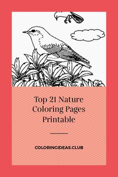 Collection of articles about Top 21 Nature Coloring Pages Printable. Get this Incredible and Pin this article right now! Free Printable Coloring Pages, Coloring Pages For Kids, Coloring Sheets, Coloring Books, Free Printables, Page Az, Nature Scenes, Amazing Nature, Big Kids