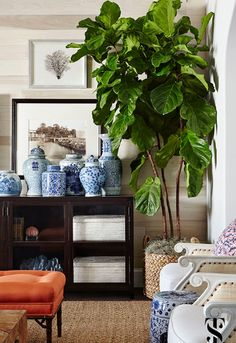 Love the wood, pottery, green, whites and other neutrals, very sophisticated british colonial