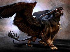 Le Griffon mythes et legende creatures imaginaires feerie
