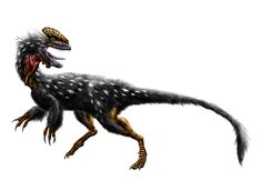 Guanlong wucaii by Durbed on deviantART