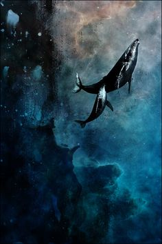 reminds me of Fantastia | Flying Whales | Eyes on Walls
