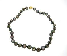 14k Gold Black South Sea Pearl Necklace