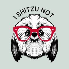 I SHITZU NOT is a T Shirt designed by mikepacheco to illustrate your life and is available at Design By Humans (shih tzu dog) Shih Tzu Hund, Shih Tzu Puppy, Shih Tzus, Corgi Puppies, Retriever Puppies, Labrador Retrievers, Lhasa Apso, Dog Life, Puppy Love