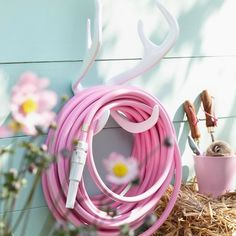 Garden Glory | Product Categories Archive | PICK YOUR FAVORITE COMBINATION