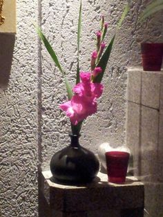 Gladiolen Stillleben