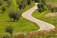 This week we teach you the word strada, street or road