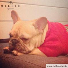 Este ficou tão aconchegado que deu até sono... SOFT AMÉRICA MILLIE Confira em nosso site: www.millie.com.br