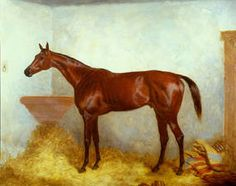 Sterling(1868)(Colt)Oxford- Whisper By Flatcatcher. 5x5 To Whalebone. Penelope(Prunella's Best Producing Daughter) Line Appears In Sterling's Pedigree At Least Three Times, Twice Through Whalebone And Once Through Cobweb.