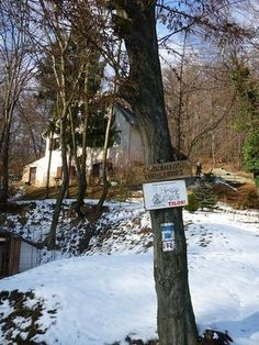 Túraajánló: Csákányospuszta - Mária - szakadék - Körtvélyesi erdei temető - Vitányvár (2011 február 06.) - Harminchárom