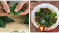 Zabudnite na sušenie: Toto je ten úplne najlepší tip, ako uskladniť bazalku!