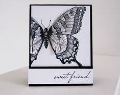 """Stampin Up Swallowtail Butterfly photo - looks like it is """"popped"""" up off the card! Nice in black and white too"""