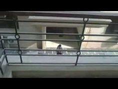 Luxury Apartment in South Delhi