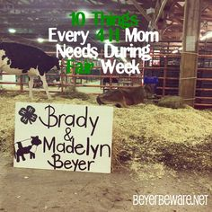 10 things every Mom should have at the county fairYou can find Showing livestock and more on our things every Mom should have at the county fair County Fair Projects, Science Fair Projects, County Fair Crafts, 4h Fair, Stall Decorations, Show Goats, 4 H Club, Pig Showing, Show Cattle