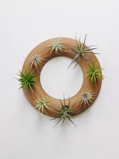 Wheel Thrown Ceramic Wreath Wall Planter in Hazelnut Brown. Living Wreath for Air Plants.