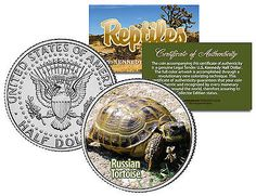 RUSSIAN TORTOISE * Reptiles * JFK Half Dollar US Colorized Coin HORSFIELD TURTLE
