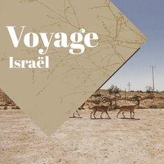 Idées et inspiration pour un voyage en Israël. Découvrez ses plus beaux paysages et ses plus belles villes!