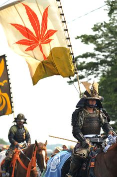 Japanese Culture, Japanese Art, Ninja, Matsuri Festival, The Last Samurai, Japanese Warrior, Samurai Armor, Fantasy Illustration, Botanical Illustration