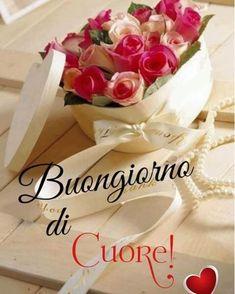 buongiorno con i fiori Italian Greetings, Italian Memes, Good Morning Quotes, My Flower, Flower Power, Vanilla Cake, Video, Tweety, Inspirational