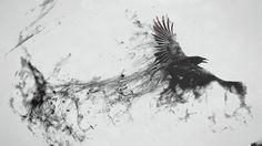 Ink raven - Imgur