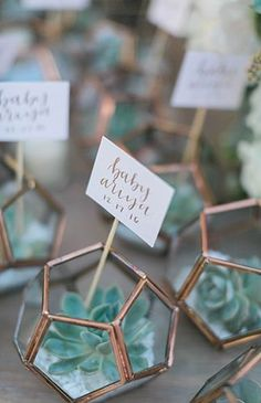 Present your guests with modern party favors at your wedding! Style name cards i. Present your guests with modern party favors at your wedding! Style name cards in these terrariums with succulents for trendy and stylish gifts. Boho Baby Shower, Baby Shower Food For Boy, Baby Shower Favours For Guests, Fiesta Baby Shower, Shower Bebe, Wedding Gifts For Guests, Baby Shower Themes, Shower Ideas, Baby Shower Favors Boy