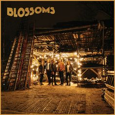 "Debut album ""Blossoms"" available from Friday 5th August."