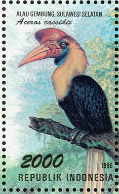 Knobbed Hornbill stamps - mainly images - gallery format