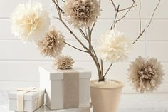 une branche et une boite cadeau décoration pompon papier de soie, une belle decoration pour toute occasion