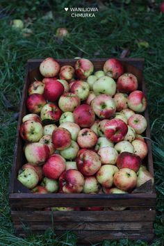 Waniliowa Chmurka: Wegańskie ciasto drożdżowe z jabłkami, żurawiną i cynamonową kruszonką