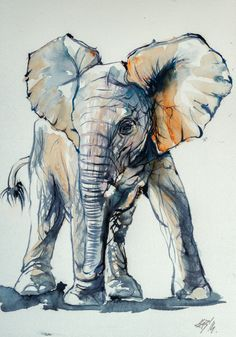 Elelphant baby by kovacsannabrigitta on deviantart paysage zen, dessin élép Animal Paintings, Animal Drawings, Art Drawings, Elephant Paintings, Nature Paintings, Art Paintings, Watercolor Animals, Watercolor Paintings, Elephant Watercolor
