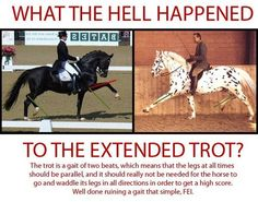 How to recognize a correct Extended Trot!