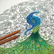 Take A Look At The Johanna Basford Coloring Canvases Event On Zulily Today