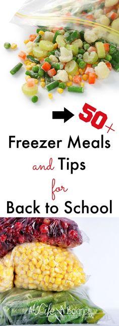 50+ Freezer Meals an