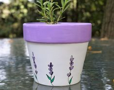 Handmade Lavender Products by FleurEscents on Etsy Lavender Flowers, Purple Flowers, Terracotta Flower Pots, Garden Pictures, Beautiful Hands, Beautiful Gardens, Gardening Tips, Gifts For Mom, Etsy Seller